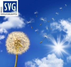 Svenska ventilationsgruppen